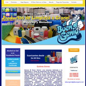 diseño de páginas web el buen genio