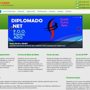Posicionamiento web natural - Grupo Codesi