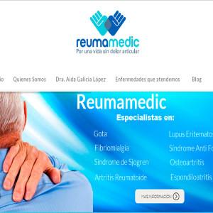 diseño de páginas web remuatólogo df