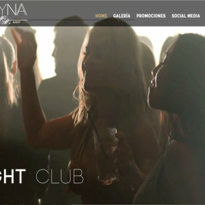diseño de páginas web skyna club